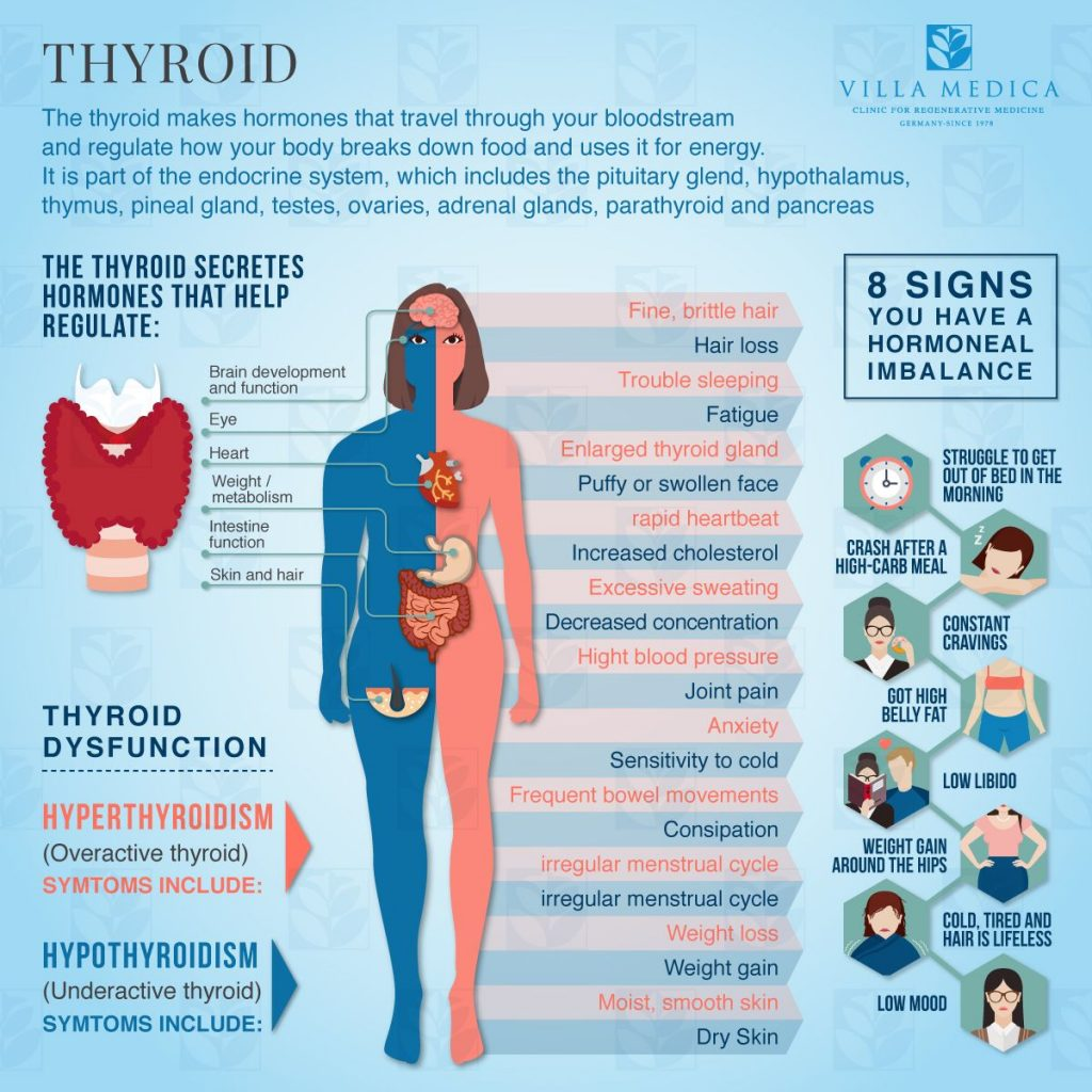 Thyroid Gland Disorders Symptoms And Diagnosis Modes